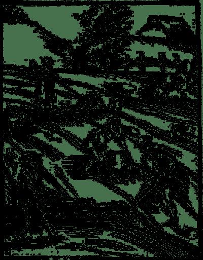 o gnojeniu winnic 002